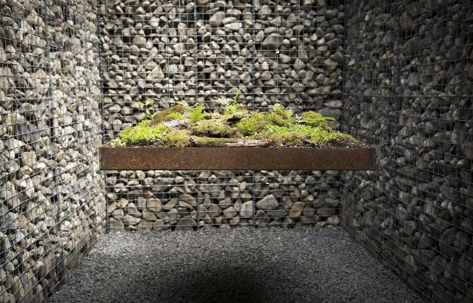«Le caveau» est un jardin contrasté, car il est en même temps éthéré et ancré.