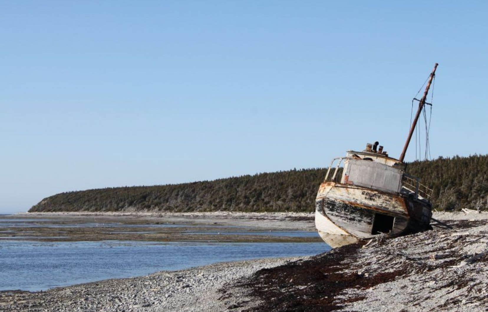 La pertinence d'explorer le potentiel pétrolier de l'île d'Anticosti est remise en question par des candidats à la course à la chefferie du Parti québécois.