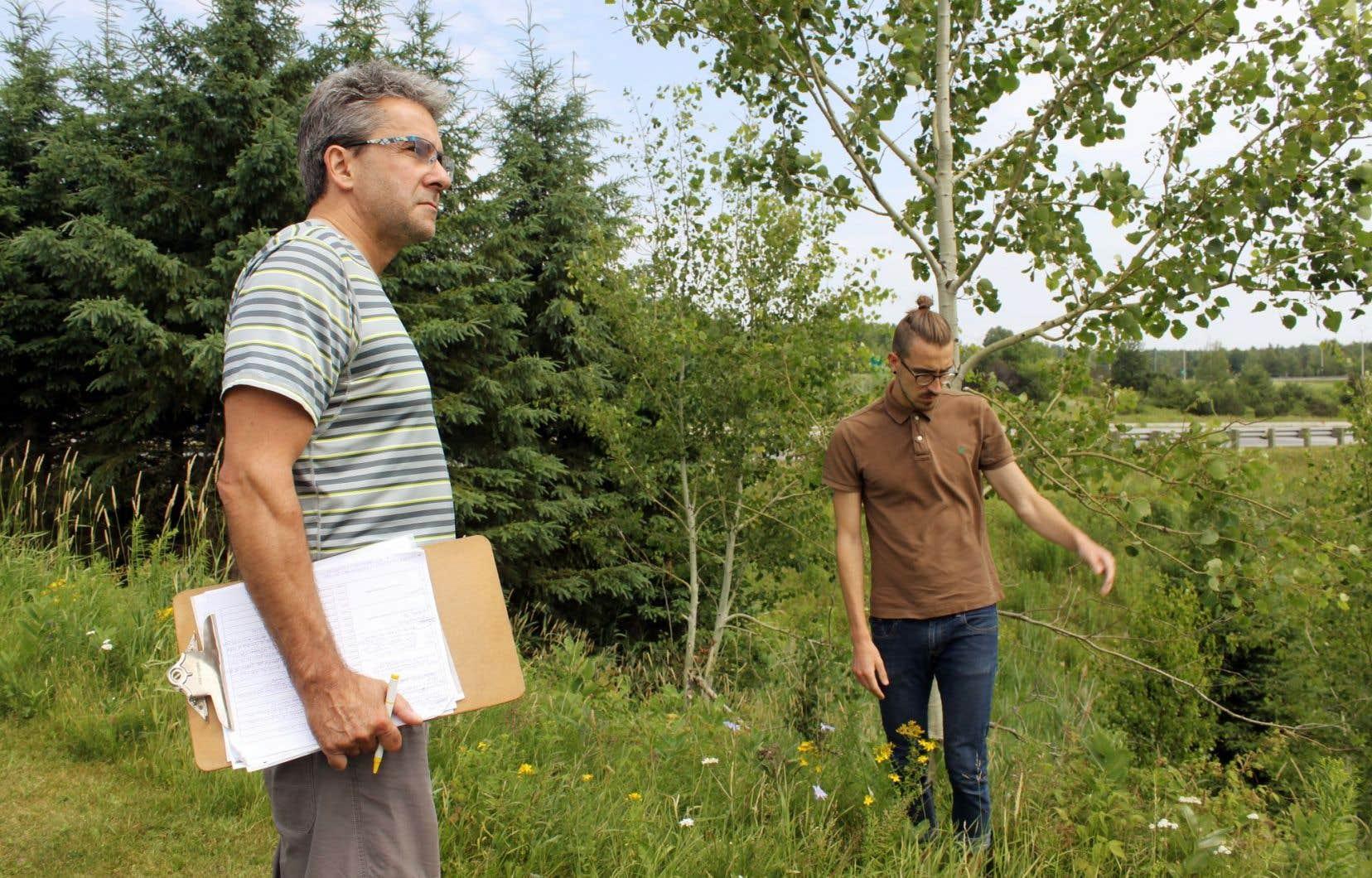 L'entomologiste Richard Trudel et le stagiaire à l'INSPQ Karl Forest chassent le moustique en bordure de l'autoroute 10.