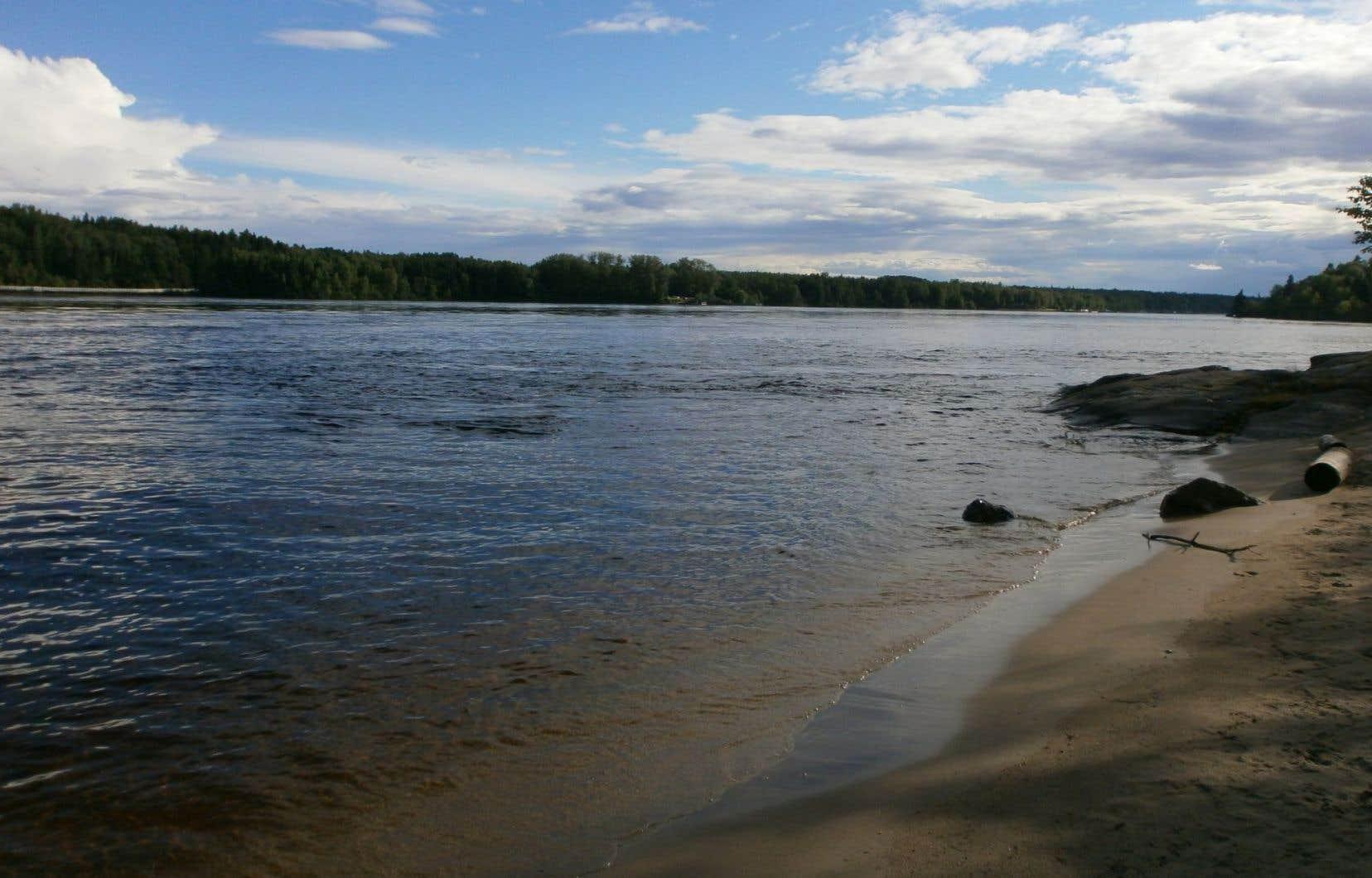 Les recherches faites sur les lacs fournissent des connaissances et des solutions à certains enjeux environnementaux majeurs, tels que les cyanobactéries ou la pollution par le mercure.