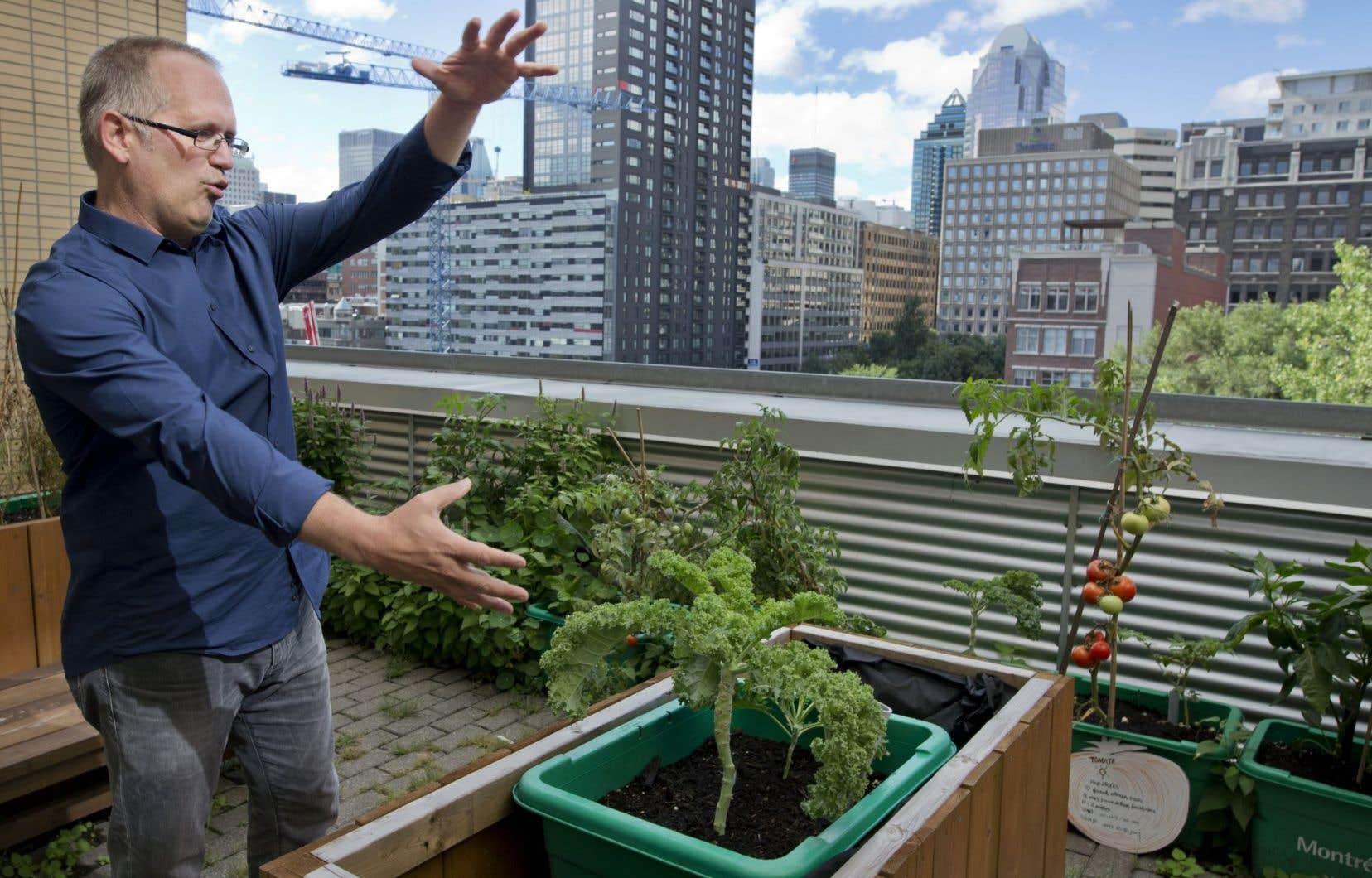 Éric Duchemin, professeur associé à l'UQAM, a contribué au livre de Jennifer Cockrall-King. On le voit ici sur l'un des toits verts de l'université.