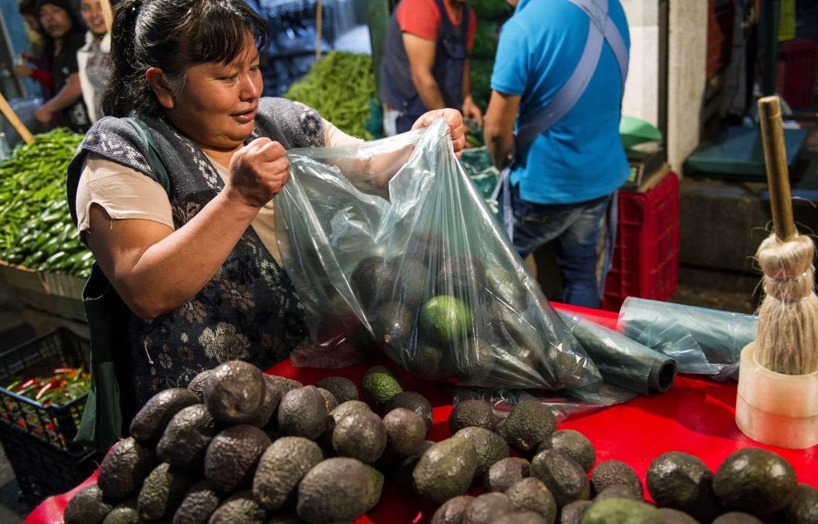 À Mexico, une femme prépare un sac d'avocats. La culture de ce fruit a explosé ces dernières années, provoquant des problèmes environnementaux et sociaux dans l'État du Michoacan où la terre lui est favorable.