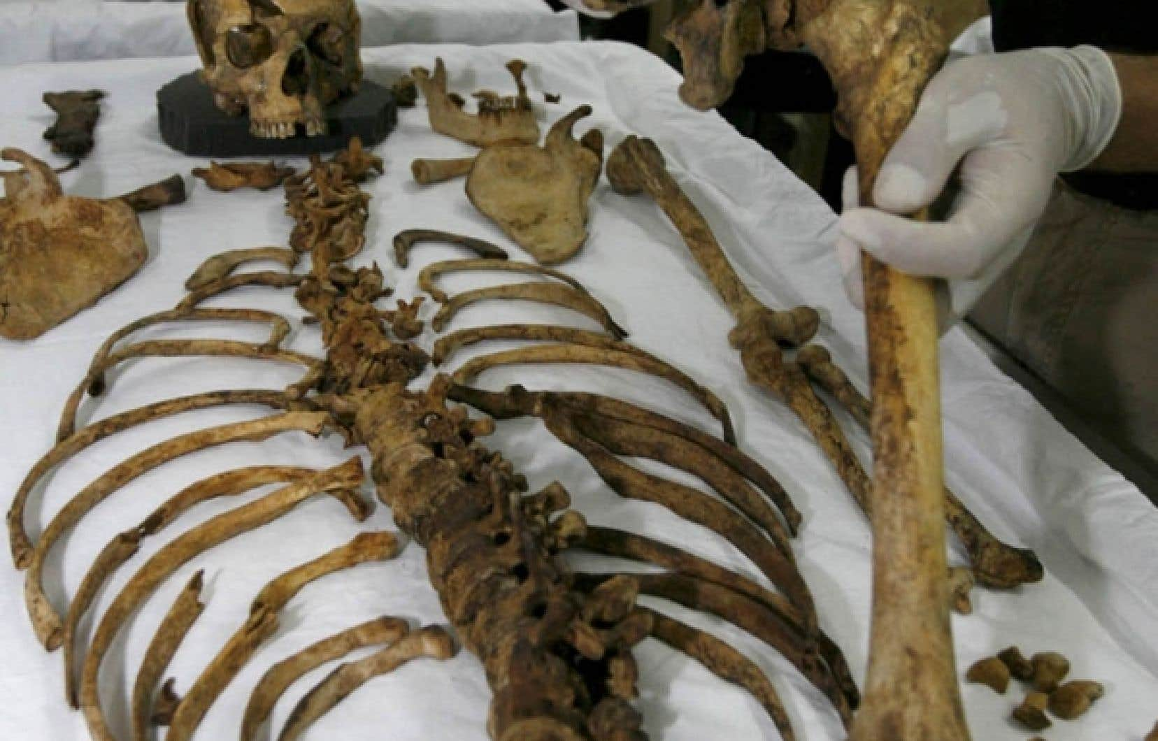 L'anthropologie médico-légale permet de reconstituer des squelettes et leur histoire, comme ce fut le cas après la découverte de fosses communes en Irak.