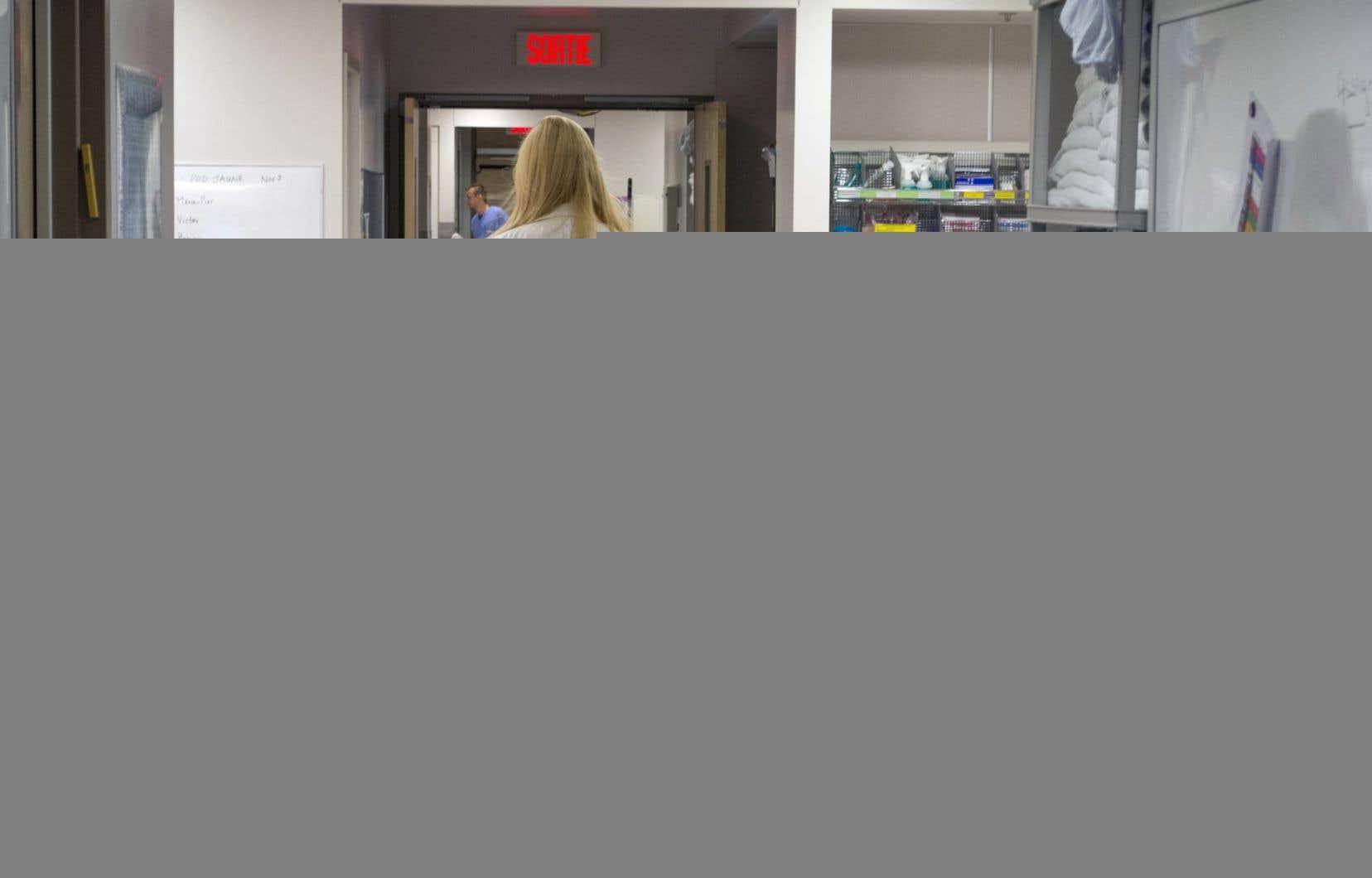 La présidente de l'OIIQ, Lucie Tremblay, reproche au gouvernement de « faire miroiter » à ces immigrantes la possibilité de travailler comme infirmières au Québec.
