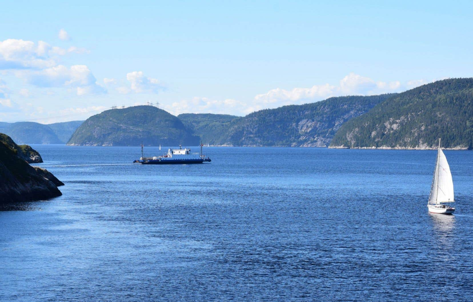 Le projet Énergie Saguenay augmentera la circulation maritime industrielle dans le parc marin du Saguenay–Saint-Laurent, le seul du genre au Québec.