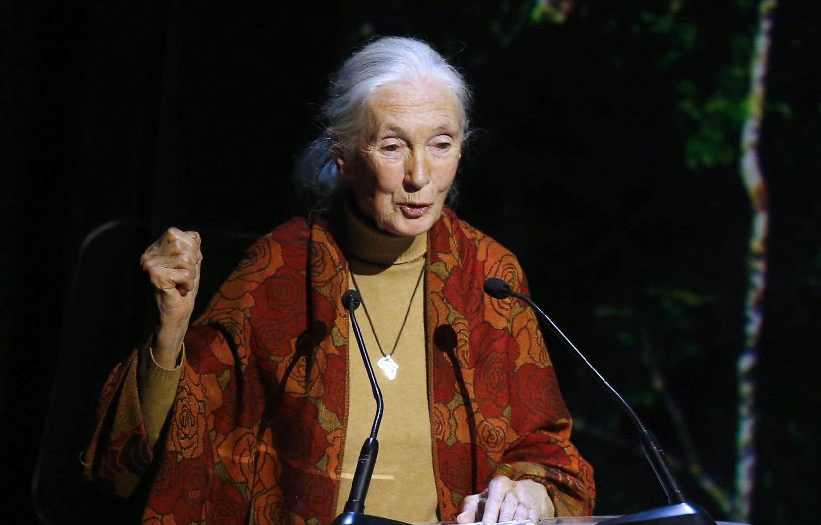 Jane Goodall lors d'une remise de prix l'an passé. «L'élevage intensif des vaches et des porcs est une forme de cruauté», a-t-elle dénoncé jeudi en conférence à Montréal.