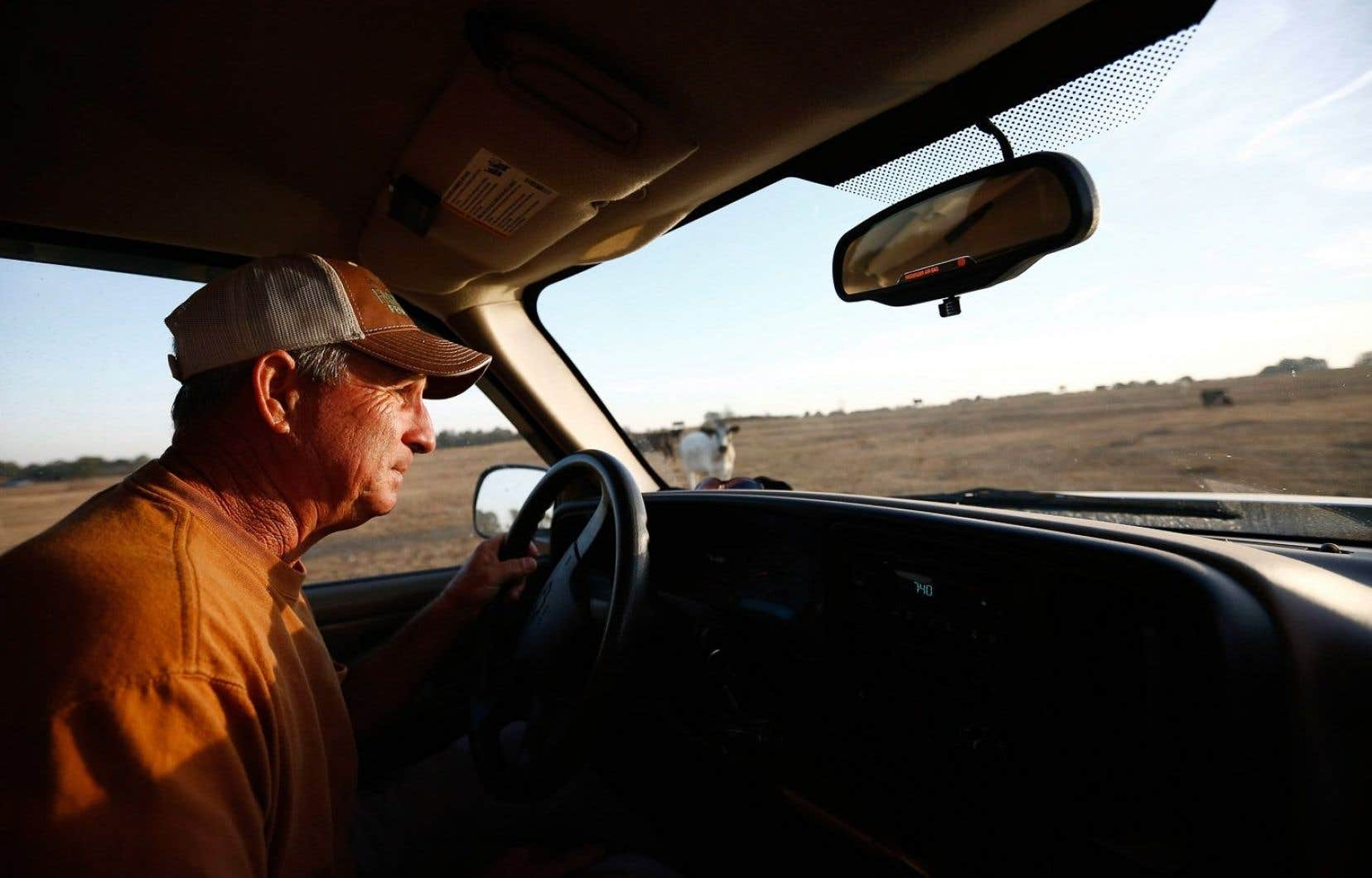 David Bailey jette un coup d'oeil à ses vaches. Le fermier a dû vendre la moitié de son troupeau - plus de 100 animaux - par crainte de ne pas pouvoir les nourrir tout l'hiver.