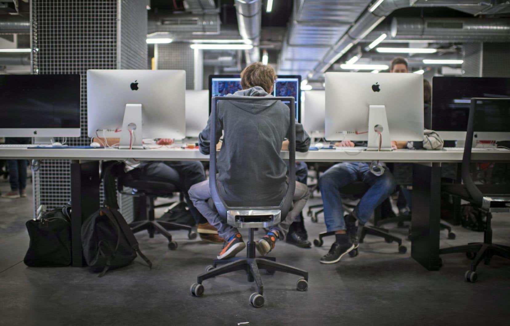 Le MEES se met à surveiller ce que l'on retrouve sur Internet afin d'éviter d'éventuelles tricheries.