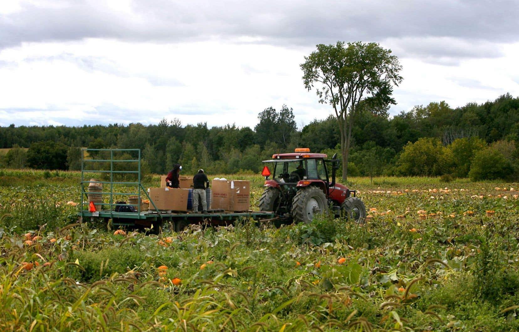 Le Programme de crédit de taxes foncières agricoles suscite la grogne des producteurs agricoles.