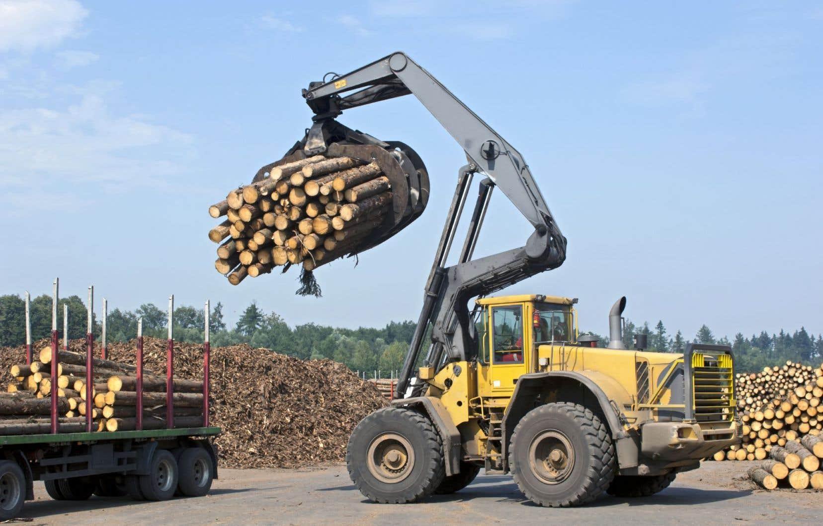 Alors que 90% du bois récolté au Canada provient de terres publiques, c'est le cas pour seulement 30% du bois aux États-Unis.