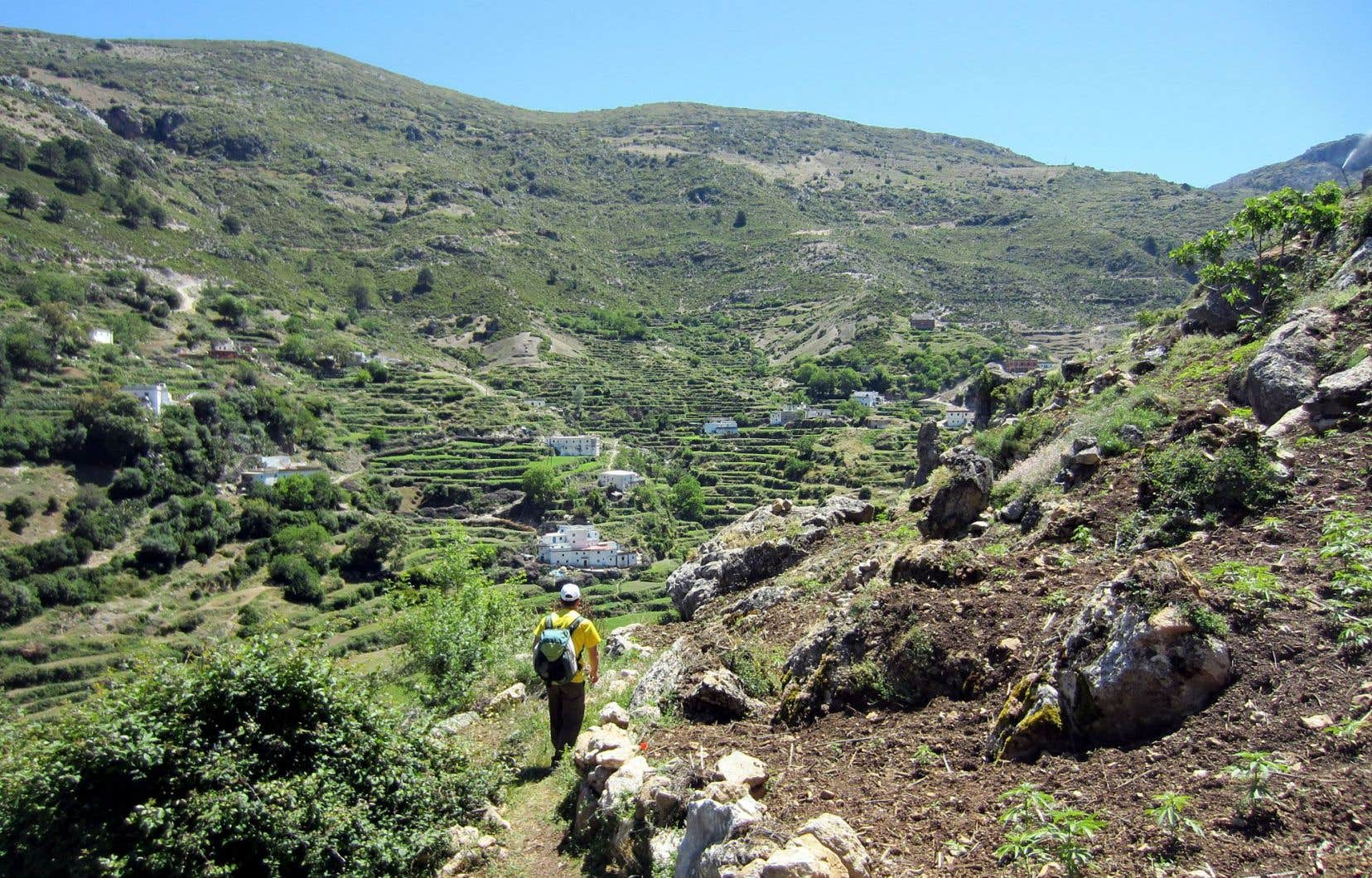 Marcher dans le Rif, c'est traverser des villages comme Imezzer, logé au bas de rudes descentes dans un panorama au vert éblouissant.
