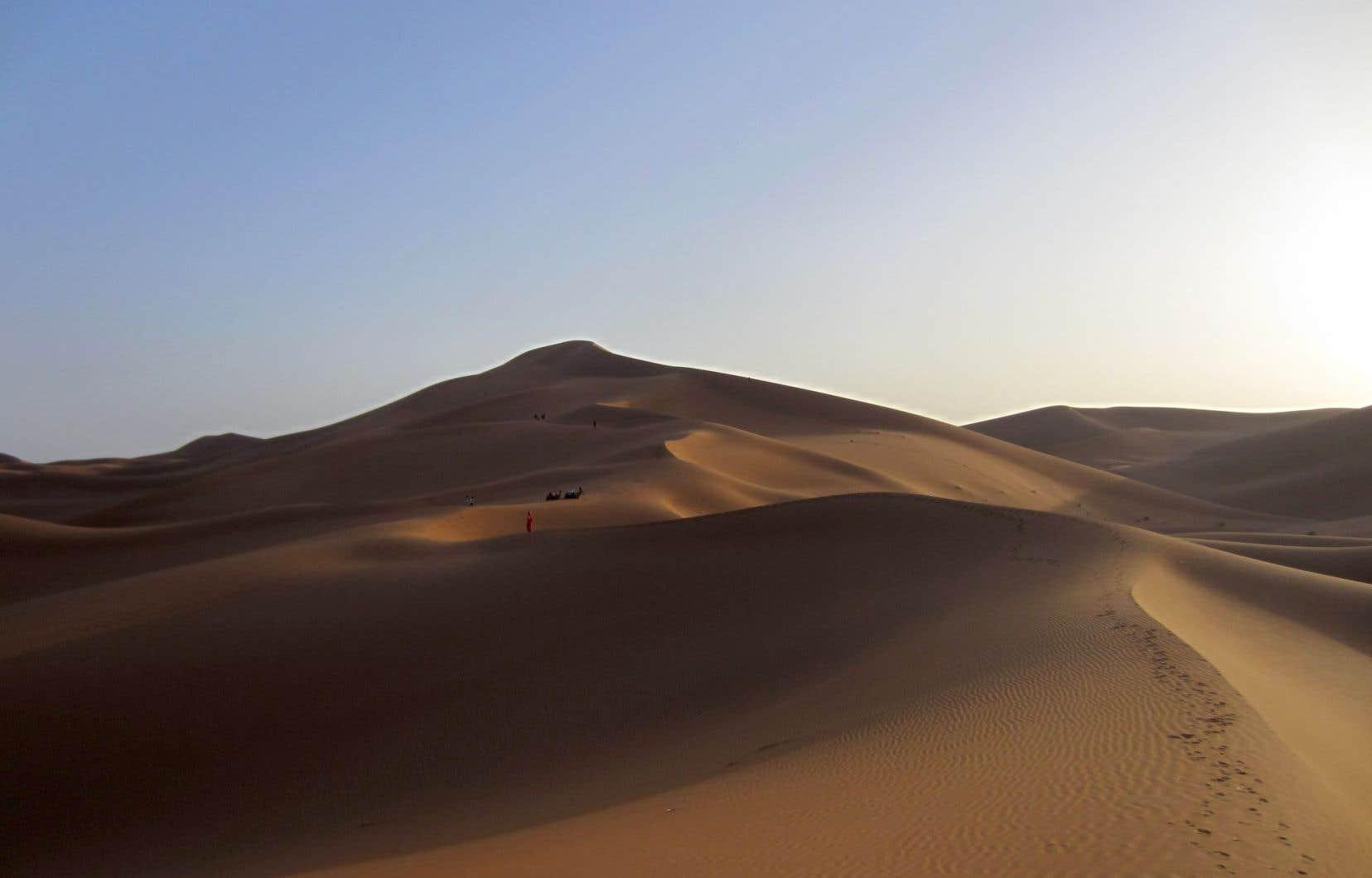 Une méharée dans les dunes, au couchant, donne à voir une impressionnante mer de sable.