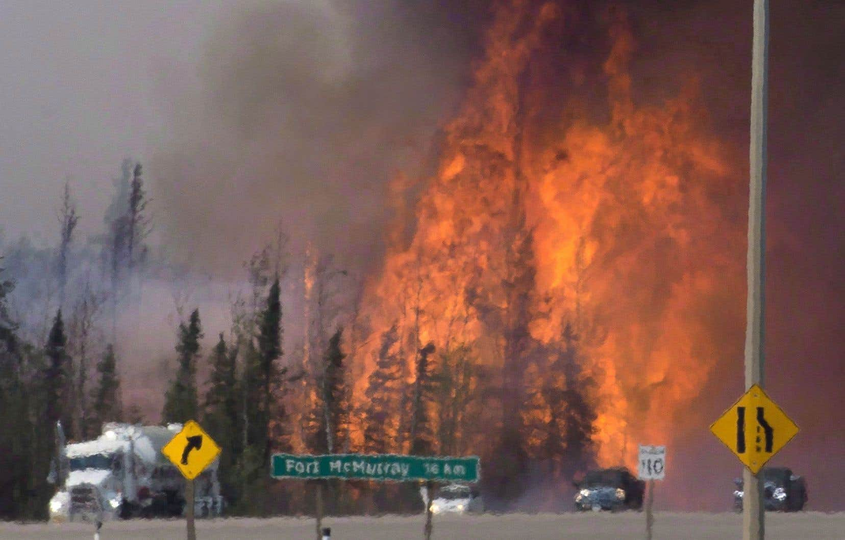 Au Canada, des incendies de forêt en mai en Alberta ont fait pour quelque 4 milliards de dollars de dégâts.