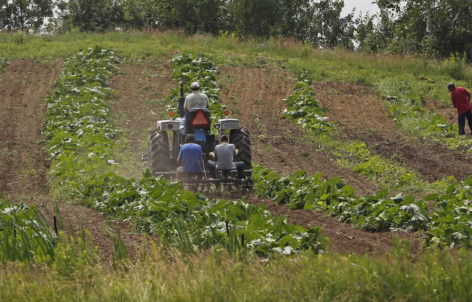 Au Québec, la majorité des terres sont vendues par des transactions intergénérationnelles. Elles échappent la plupart du temps aux rôles d'évaluation foncière, car elles sont généralement réalisées par transfert d'actions.