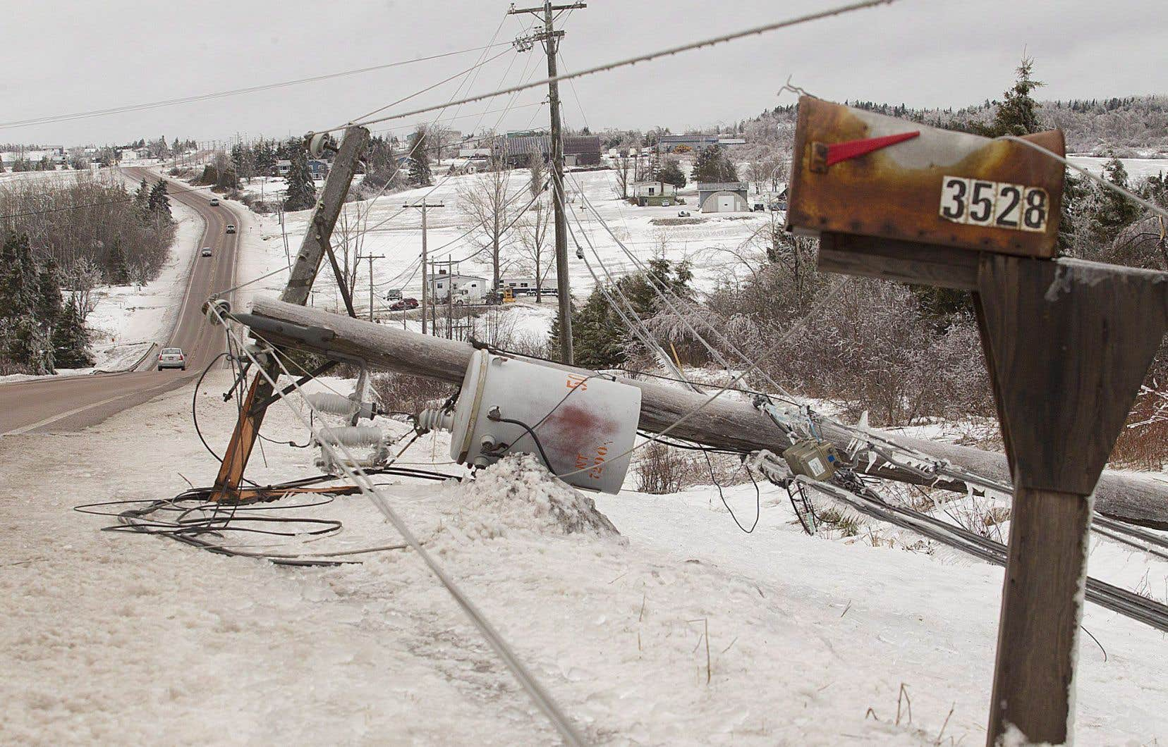 Les chutes d'arbres, de poteaux et de fils électriques compliquent la tâche aux secours.