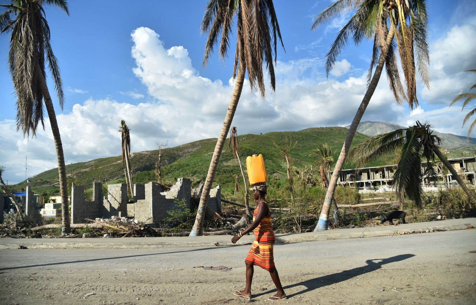 Haïti est toujours aux prises avec la plus importante épidémie de choléra à l'échelle mondiale: 30000 cas pourraient être recensés au cours de l'année 2017.
