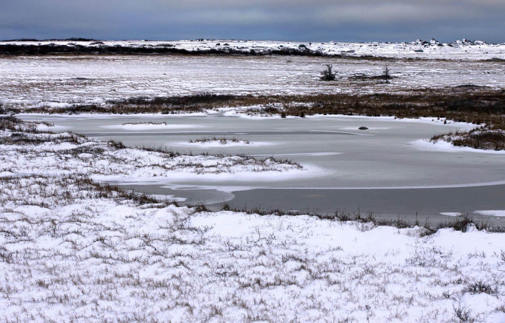Le voyage du jeune explorateur Samuel Hearne l'a mené du nord de Churchill jusqu'aux confins de la mer Arctique.