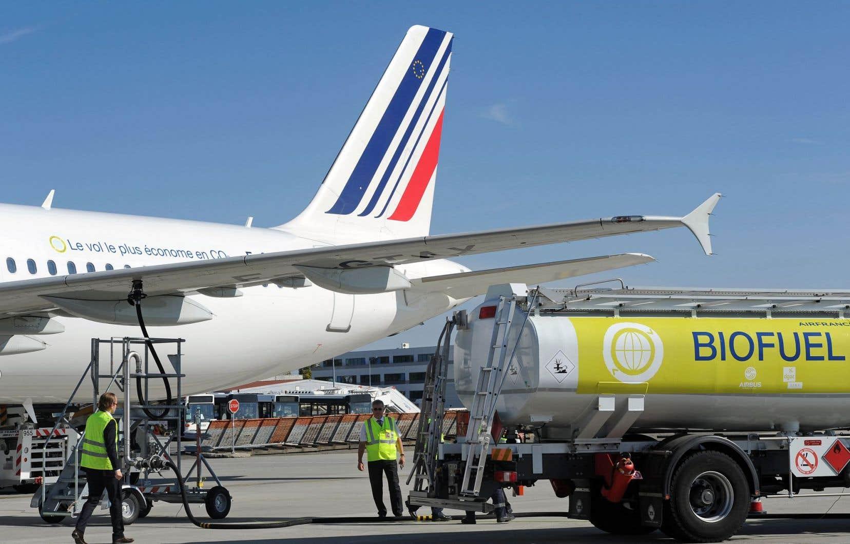 Le remplacement même partiel du kérosène par des biocarburants durables est l'un des quatre piliers privilégiés par l'Organisation de l'aviation civile internationale.