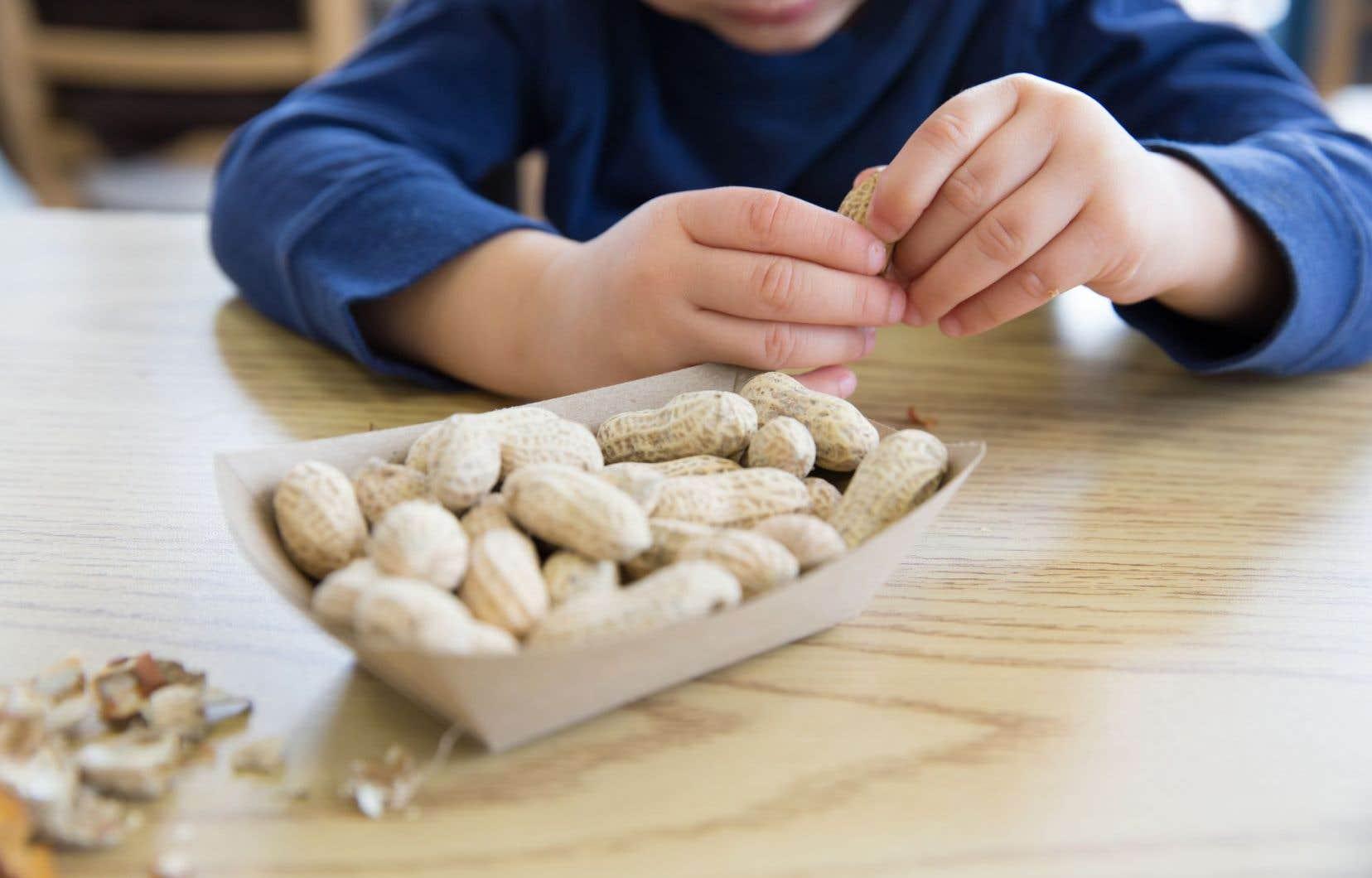Il est estimé qu'aux États-Unis, 2% des enfants sont allergiques aux arachides.