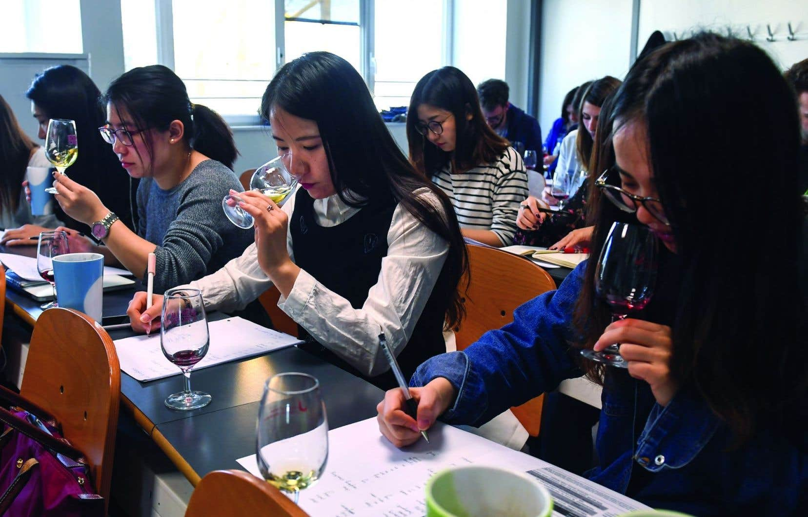 Des étudiants dans un cours de dégustation du vin à la School of Wine de Dijon