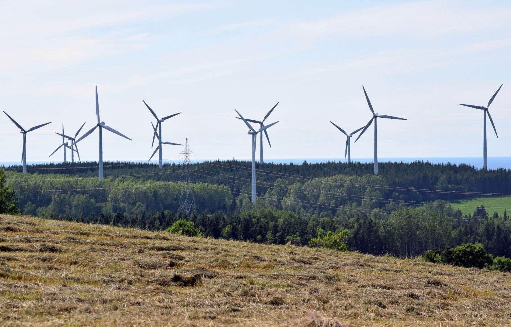 Le développement record des énergies renouvelables illustre la baisse des coûts de l'éolien et du solaire photovoltaïque.