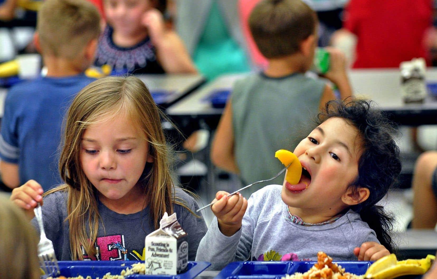 Celui-ci [l'auteur] croit que les élèves devraient se faire à déjeuner à l'école comme ils le font à la maison. «On va leur enseigner ce qui est bon pour la santé et, lorsqu'ils iront en classe, ils auront eu 20 minutes de cours sur l'alimentation du petit-déjeuner.»