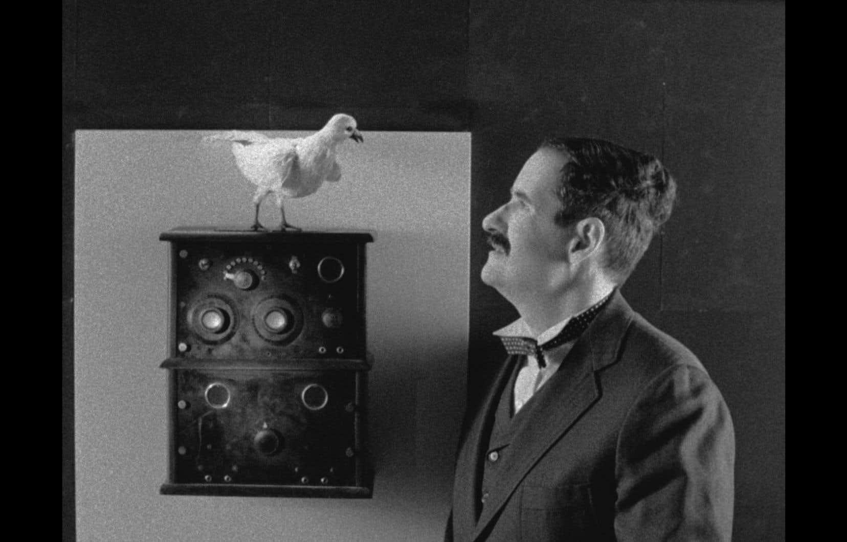 Dans «Tesla: lumière mondiale», Matthew Rankin s'attarde sur l'envoûtement amoureux de Tesla pour un oiseau.