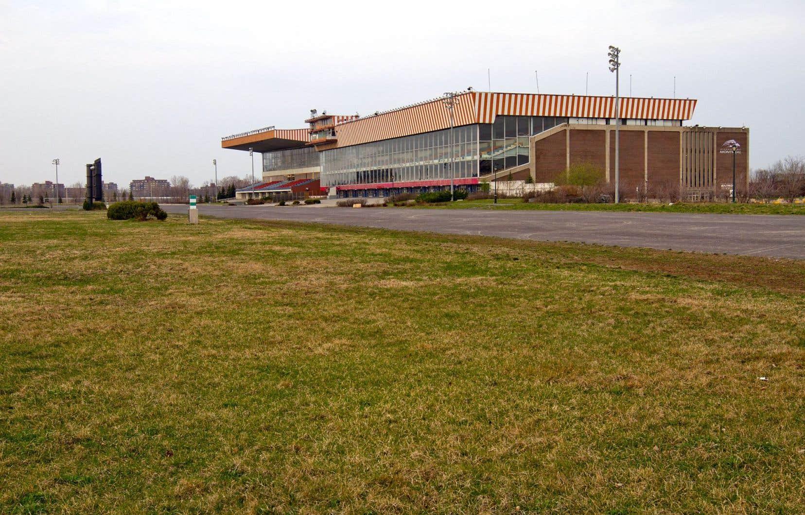 La Ville s'est heurtée à sa propre réglementation sur la déconstruction des bâtiments avant de pouvoir prendre possession des terrains de l'ancien Blue Bonnets, selon le président du comité exécutif.