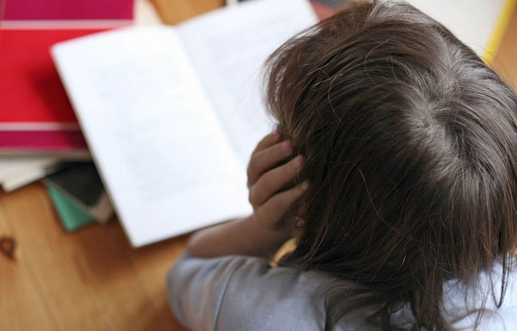Le ministre de l'Éducation a déposé vendredi un projet de loi pour mieux répondre aux exigences de la Loi sur l'instruction publique.