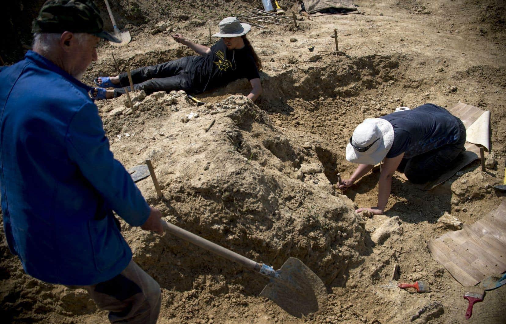 Des paléontologues travaillent près du site où une dent fossilisée à trois racines a été trouvée en 2002, près du village de Rupkite, dans le centre de la Bulgarie.