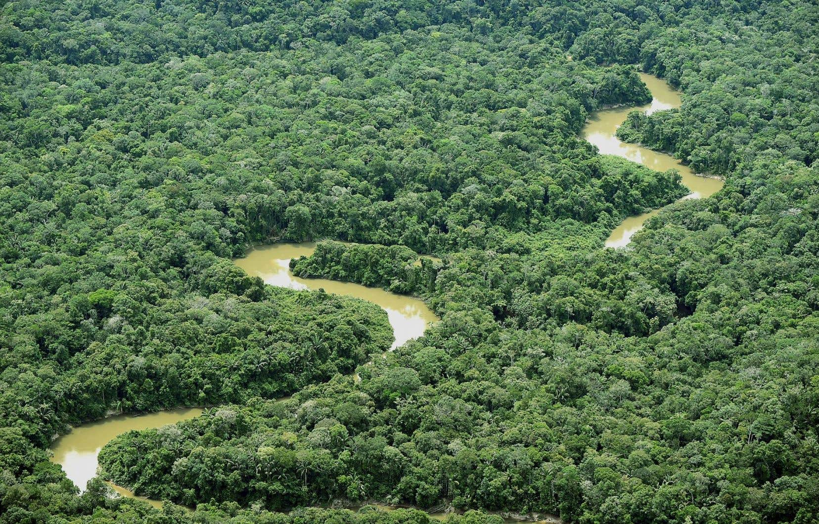 La rivière Guainia, dans le département du même nom, où le gouvernement colombien a lancé des activités minières illégales.