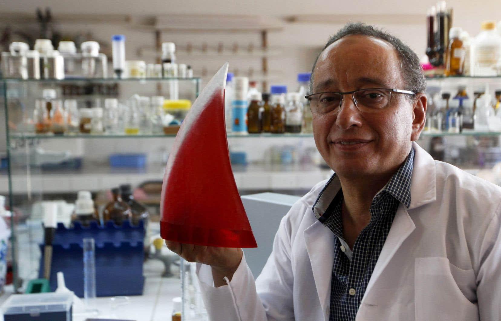 Le chercheur marocain Adnane Remmal