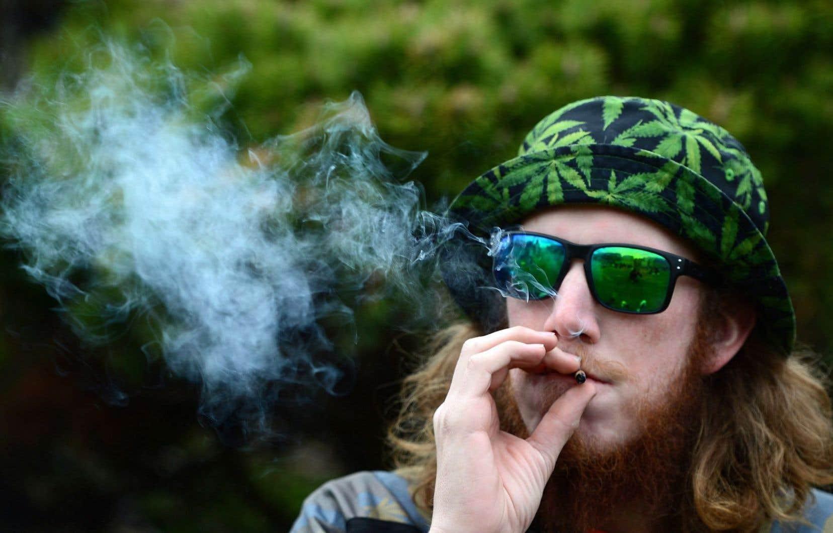Un dépassement de vingt grammes ou de deux plants de marijuana entraînera une contravention de 200$.