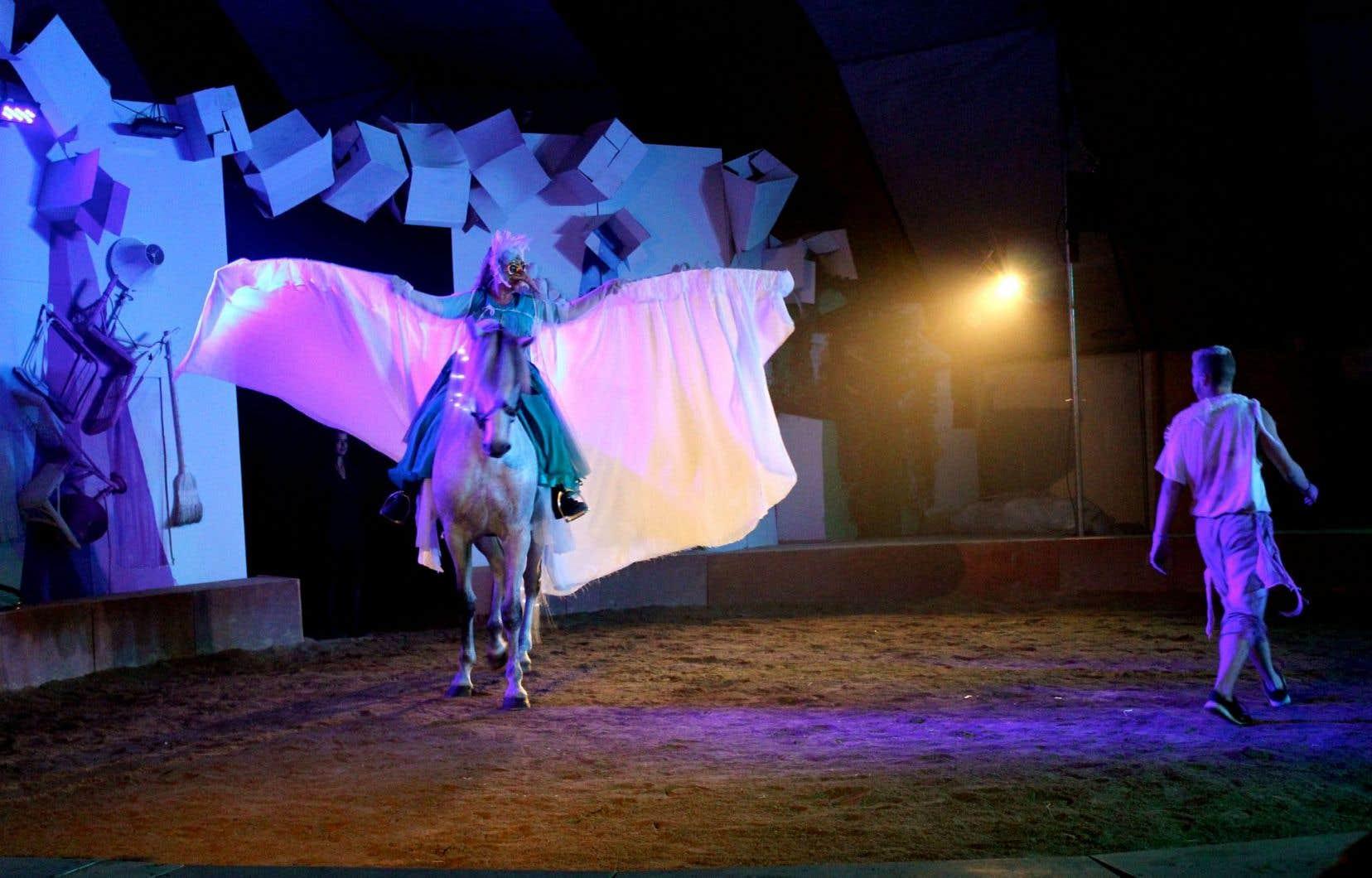 Redonnant au cheval sa place primordiale, Ekasringa crée une synergie entre hommes et animaux.