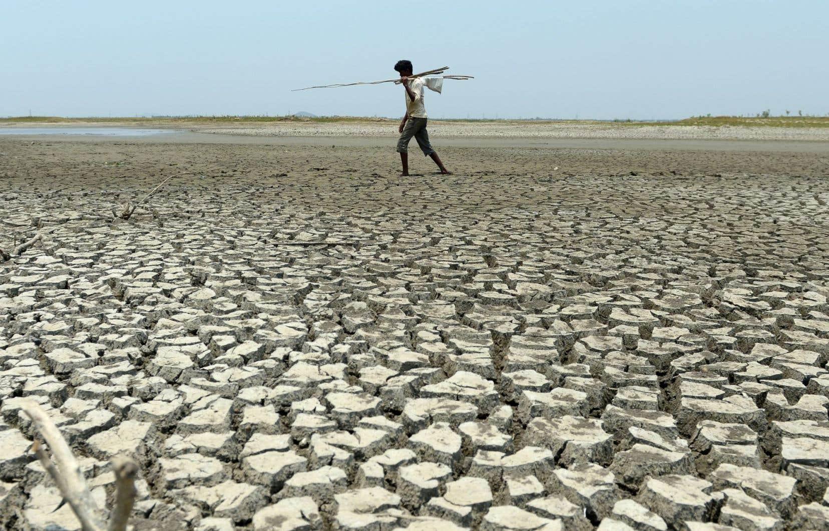 De nombreuses études en Asie du Sud ont établi un lien entre le changement climatique et la fréquence des canicules et leur impact sur la santé humaine.