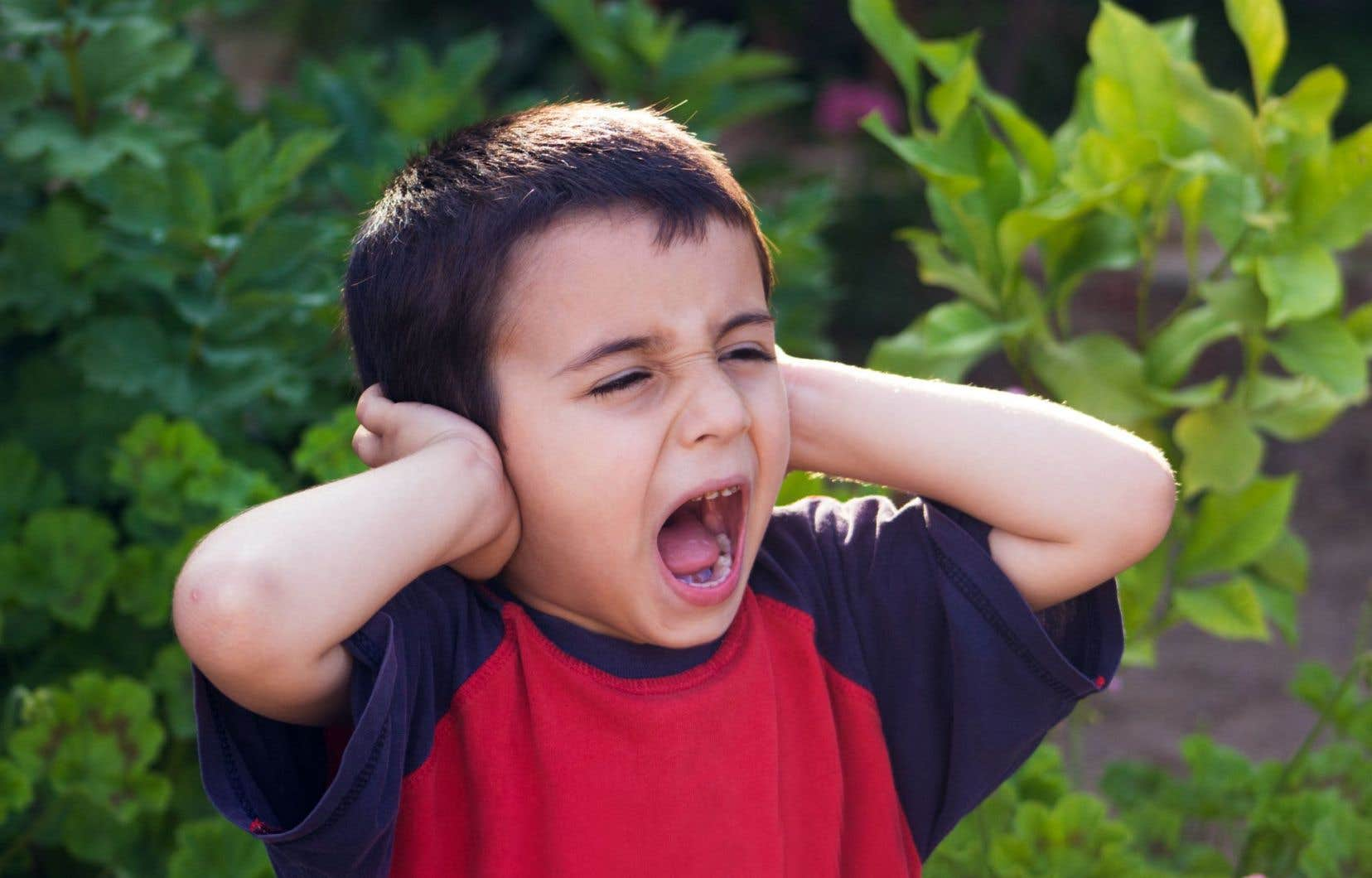 Une zone située à l'avant du cerveau, le cortex cingulaire antérieur, n'est activée que chez les non-entendeurs de voix.