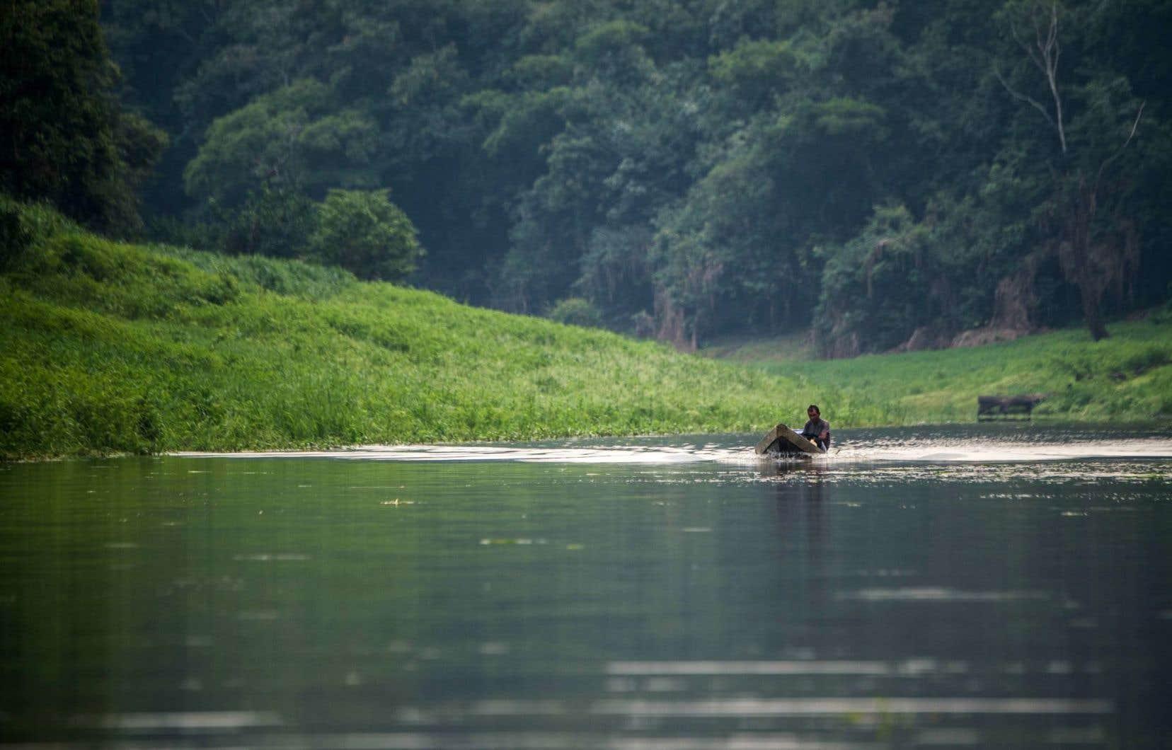 Le Rio Negro, dans l'ouest de l'Amazonie brésilienne