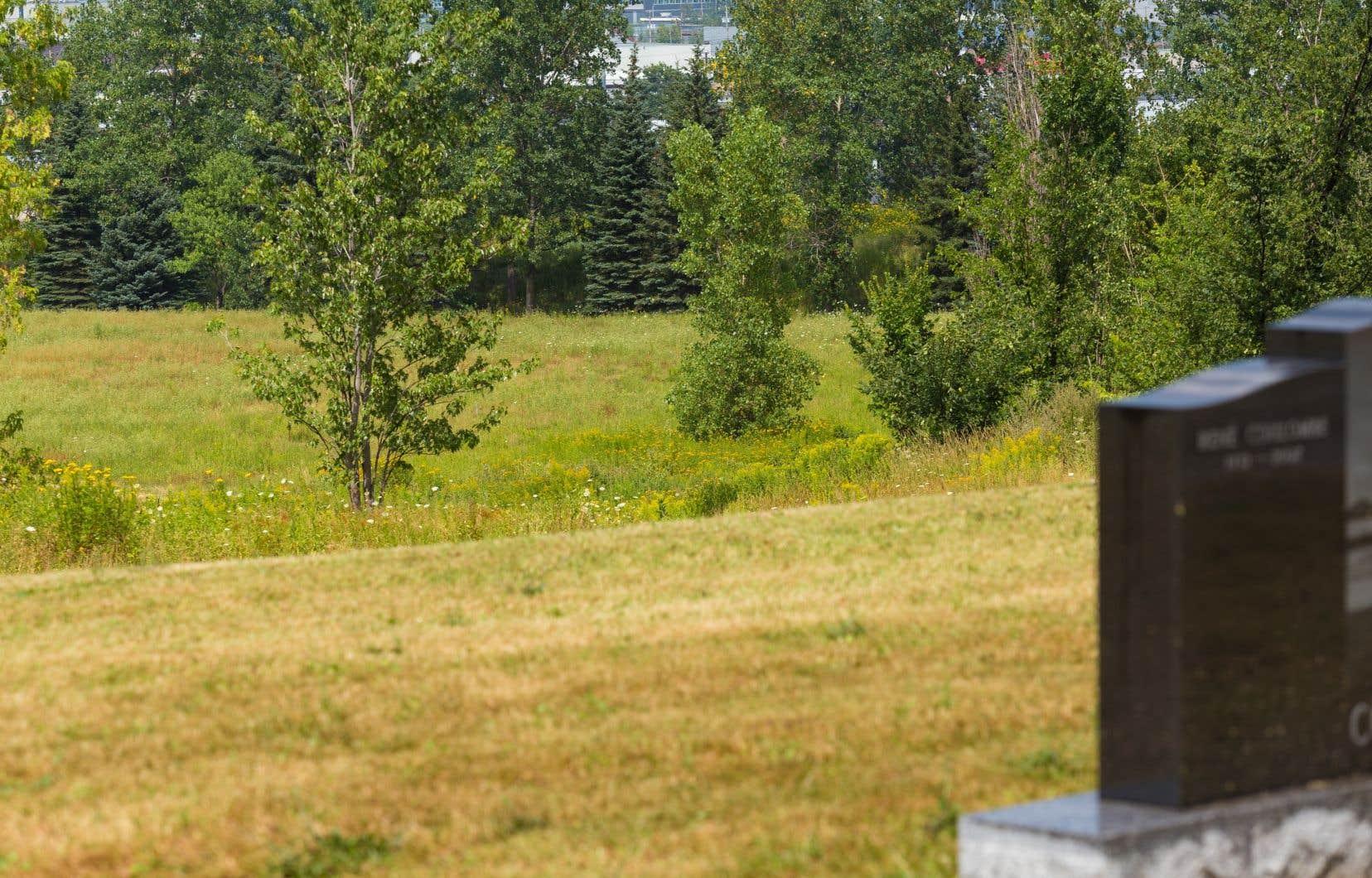 La Ville de Québec a offert un terrain pour le projet de cimetière musulman piloté par le Centre culturel islamique de Québec.
