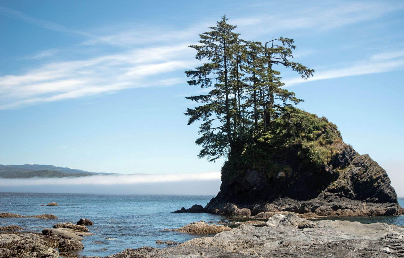 Une des plus belles sections est la Pointe Owen, avec son petit îlot échevelé de conifères.