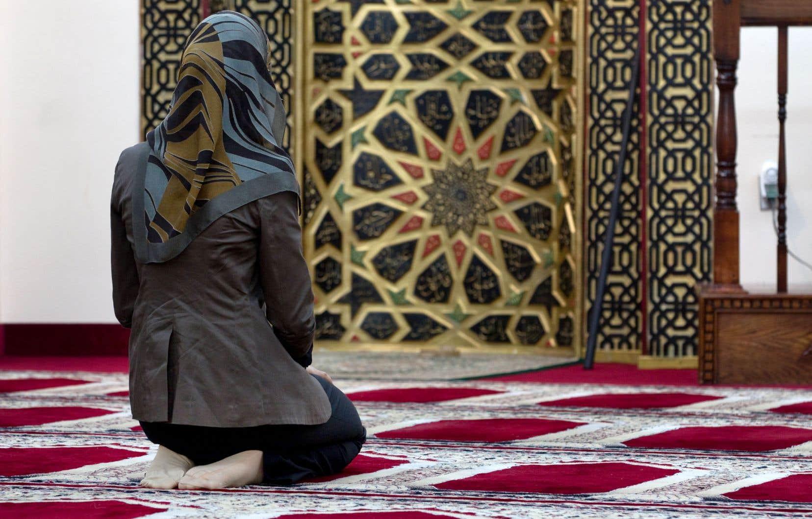 Certains pays musulmans, telles l'Égypte, l'Algérie, la Tunisie et d'autres, ont interdit le voile intégral dans certains lieux, espérant ainsi freiner l'influence politique des groupes salafistes.