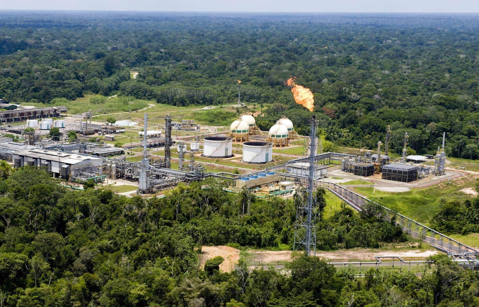 Le champ pétrolifère Urucu, au Brésil. Même si l'augmentation de l'offre pétrolière des pays hors OPEP provient en majeure partie des États-Unis, le Brésil et le Canada devraient aussi fortement y contribuer.