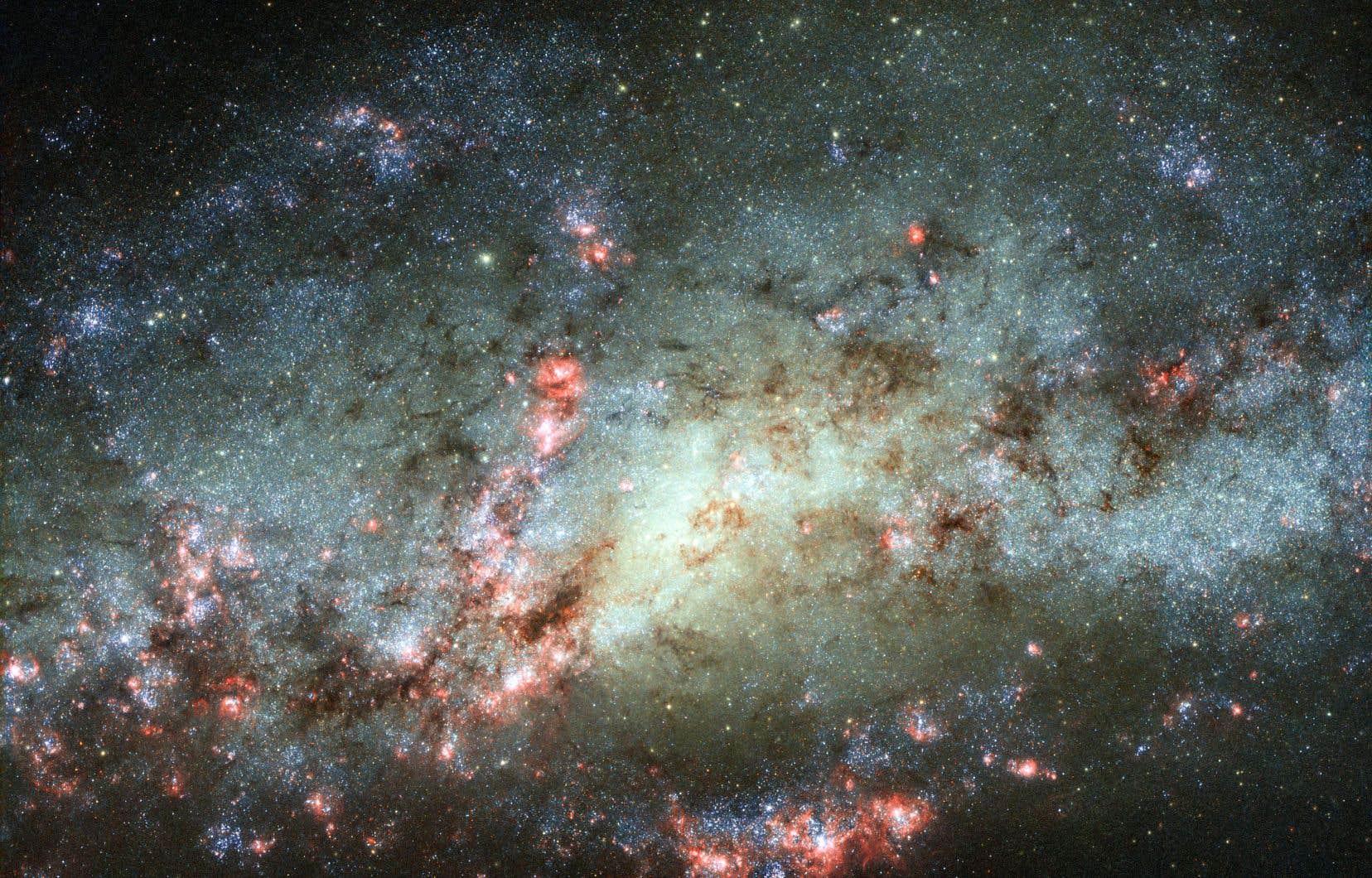 Vue de la galaxie NGC 4490 grâce au téléscope Hubble