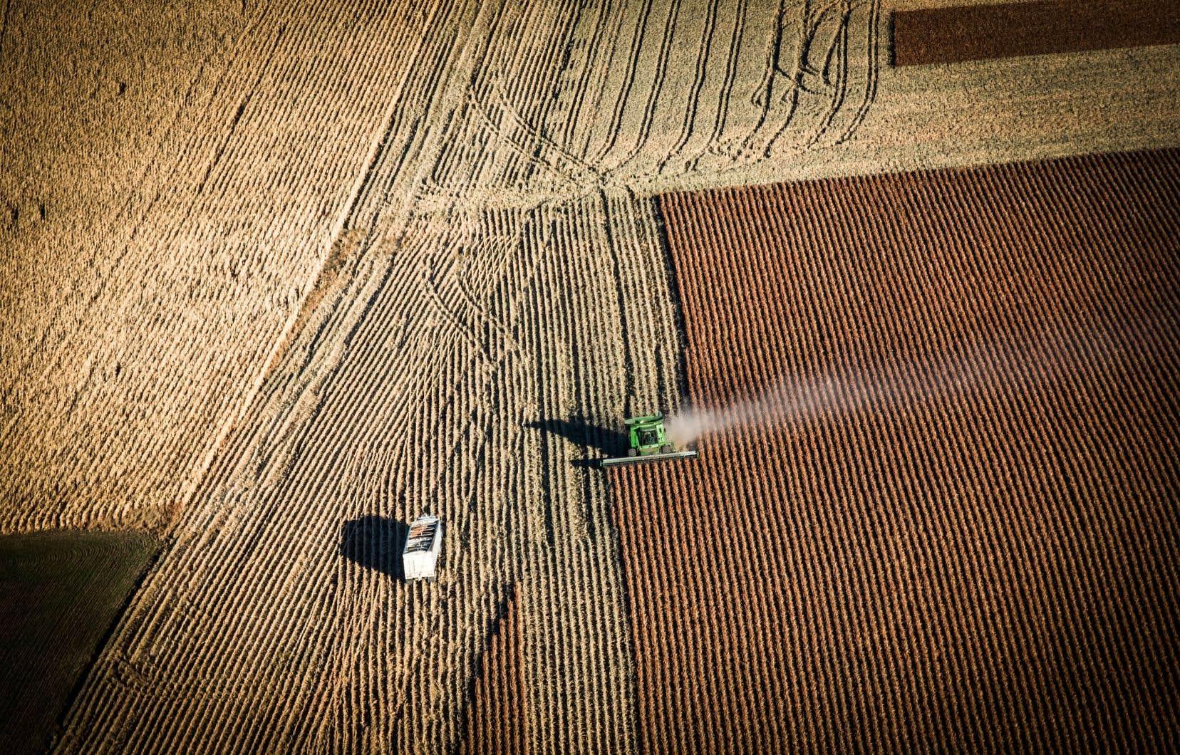 Un champ près de Presho, au Dakota du Sud. Denombreux agriculteurs s'opposent à la construction de l'oléoduc Keystone XL jusqu'au Texas.