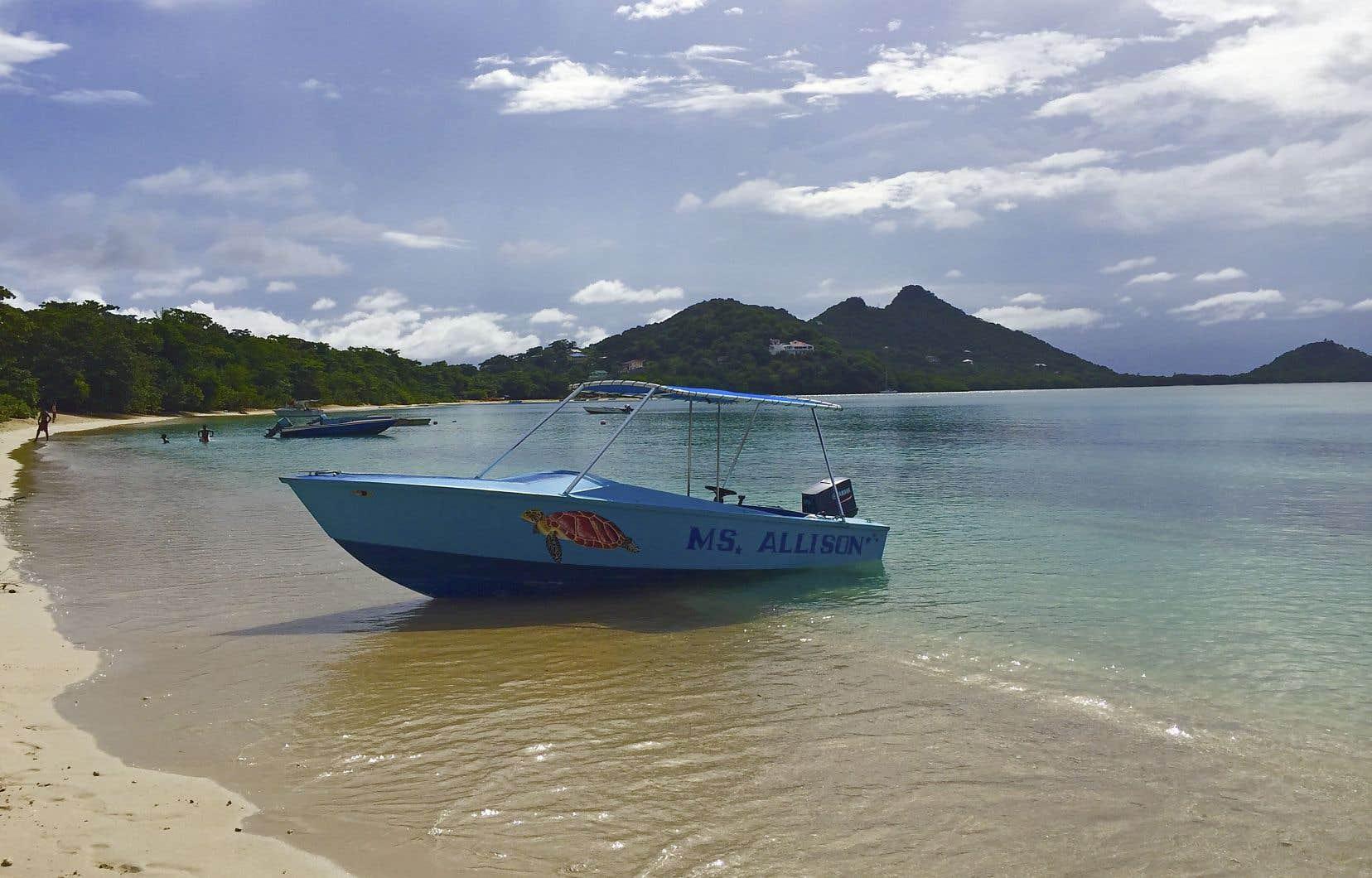 Au départ de Paradise Beach, c'est à bord du «MS Allison», de la compagnie Isle of Reefs Tours, qu'on se rend à Sandy Island.