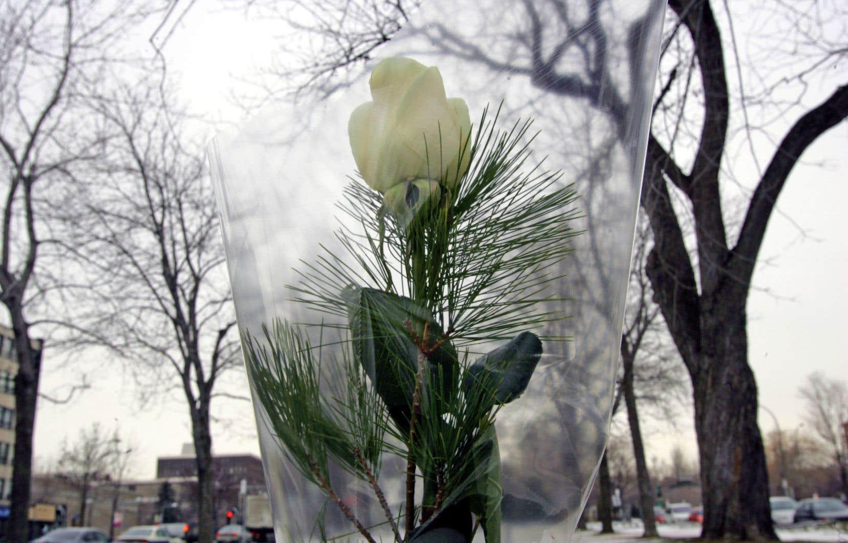 Des roses blanches ont été déposées sur chacune des sculptures de la place du 6-décembre-1989. Blanches comme le vide, comme le silence de la neige qui les recouvrira bientôt, écrit l'auteure.
