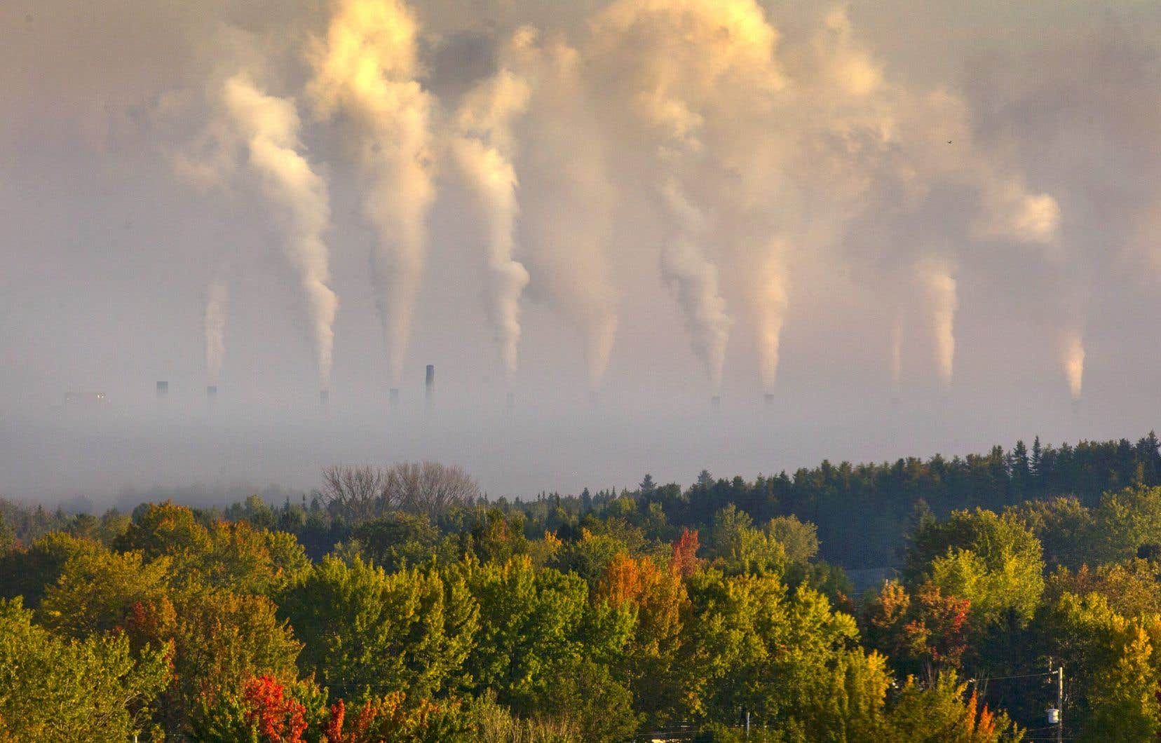 Le savoir-faire de CO2 Solutions repose sur une technologie dite de deuxième génération, soit l'utilisation d'un procédé enzymatique pour capter le carbone, au lieu de le faire passer par un produit toxique.