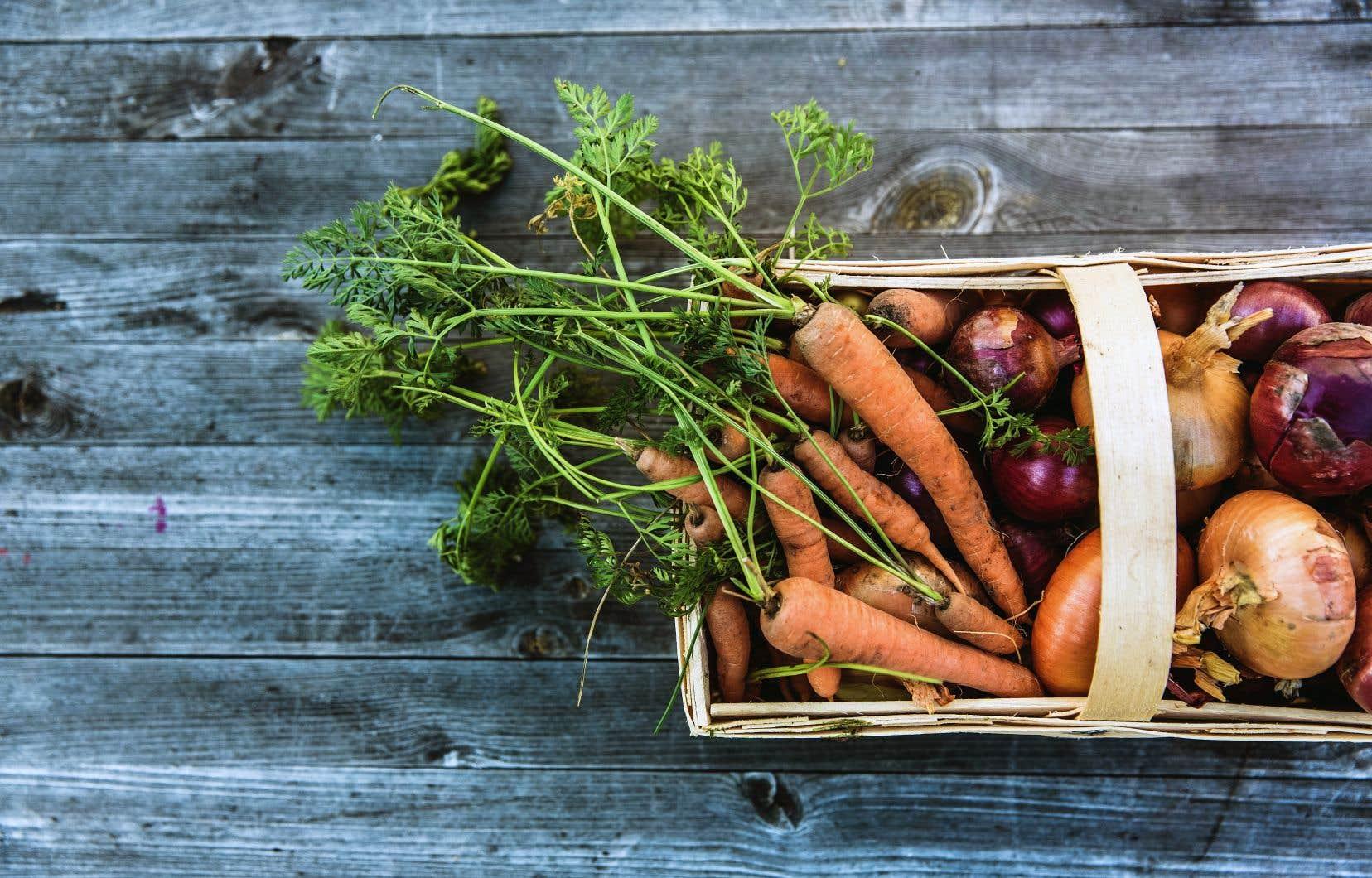 Bio ou pas bio, un bon lavage à l'eau froide des fruits et des légumes est toujours de mise. On le fait bien entendu au dernier moment, lorsqu'on s'apprête à les cuisiner ou à les consommer.