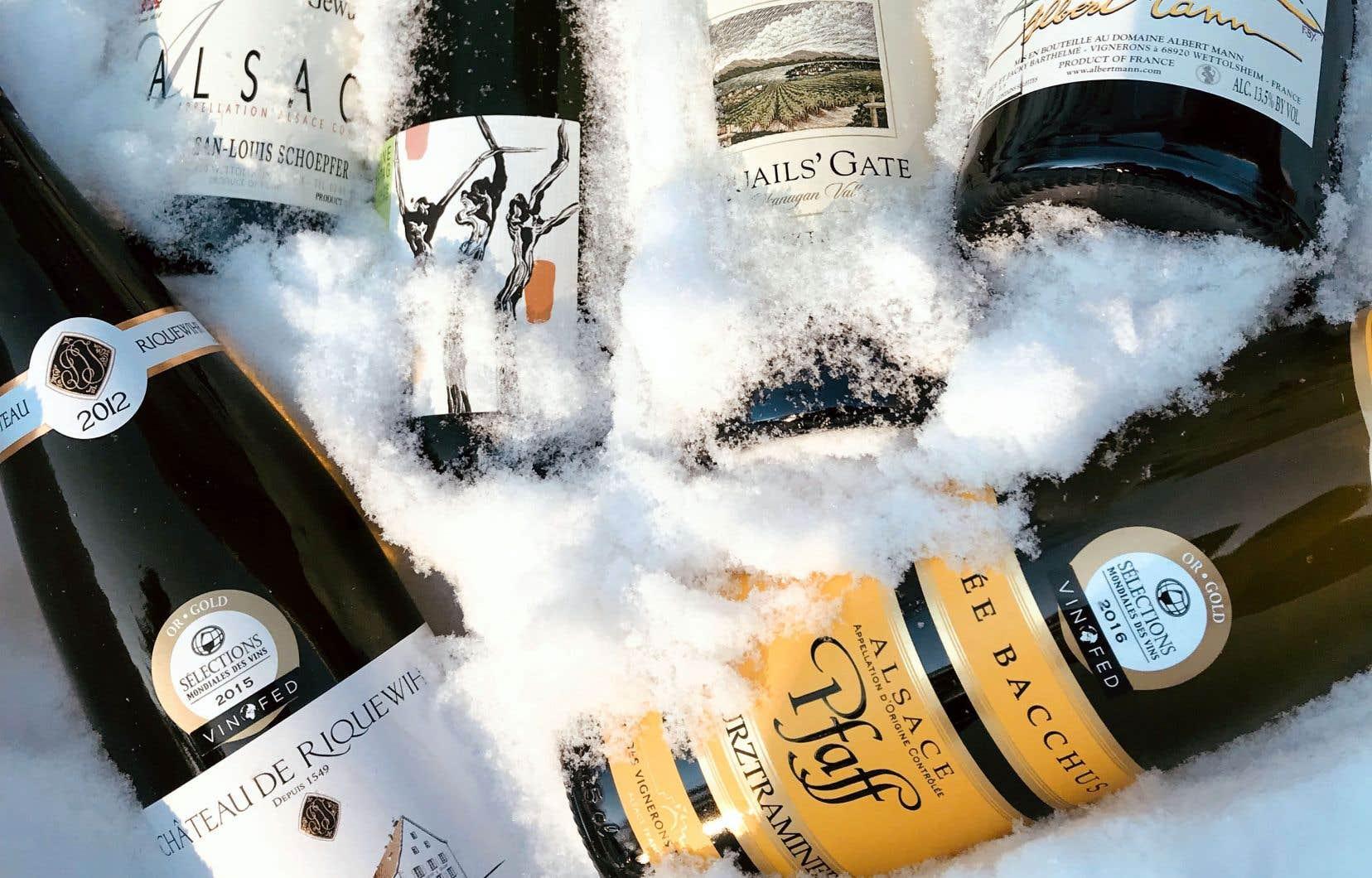 Qu'on l'aime ou pas, le gewurz, dont l'Alsace française est encore le plus grand parfumeur mondial, ne laisse personne indifférent.