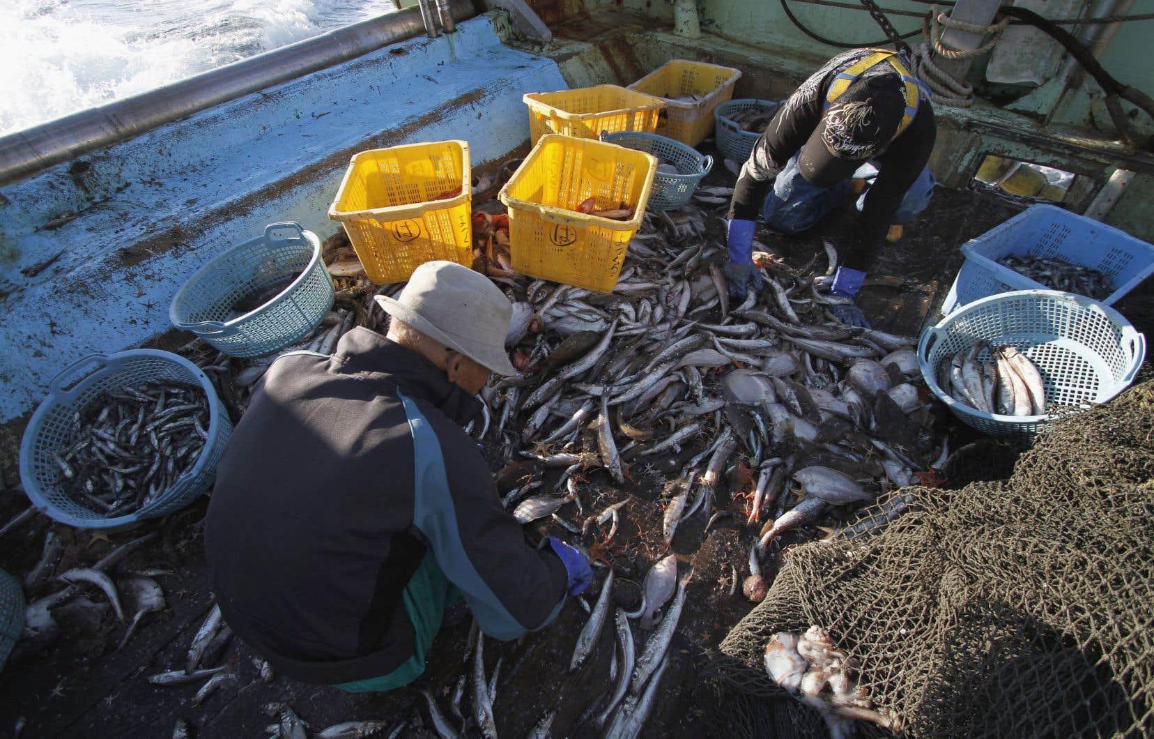 La pêche électrique est interdite en Europe depuis 1998, mais elle bénéficie cependant de dérogations depuis 2007, à titre expérimental.