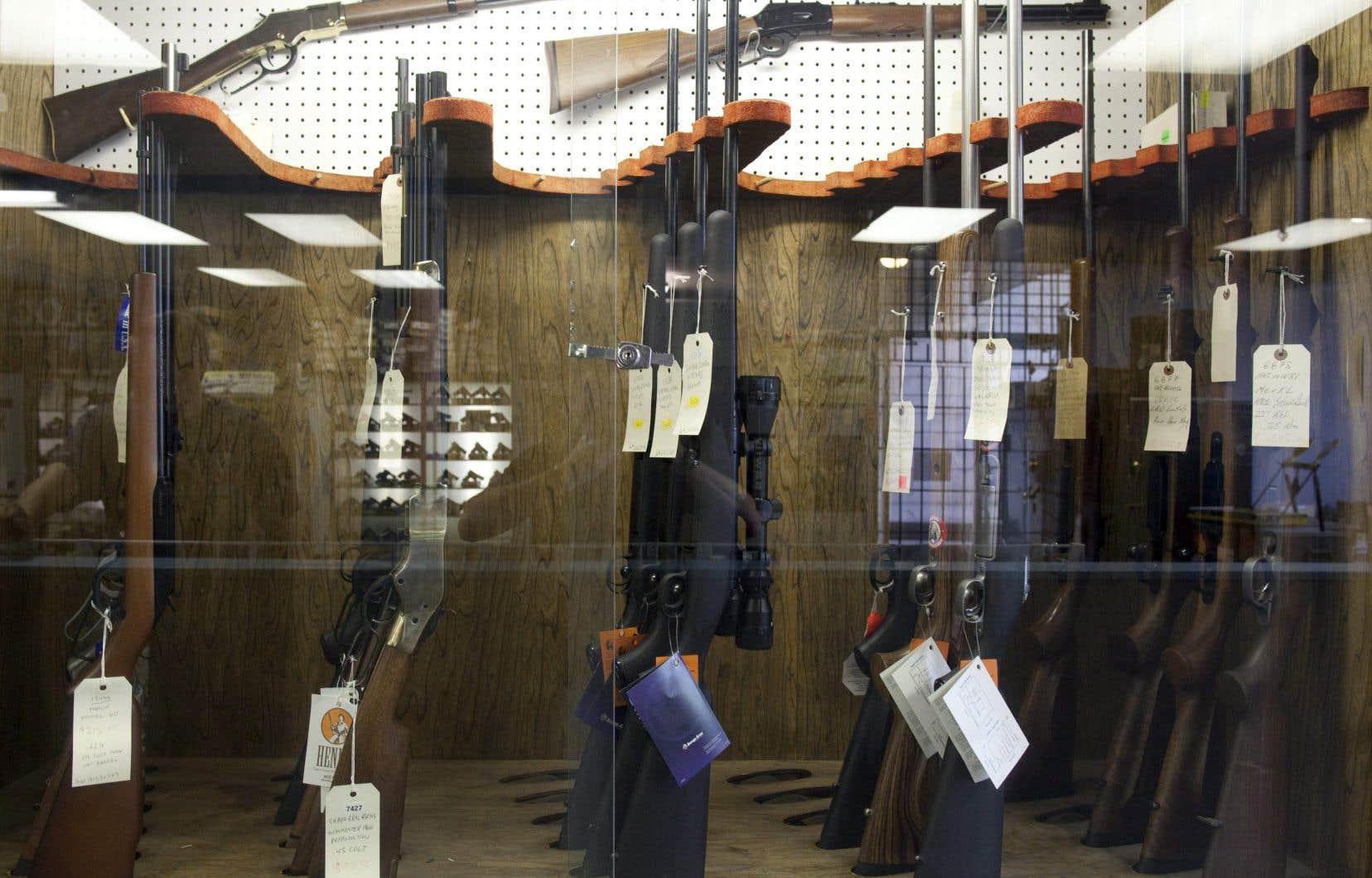 Le gouvernement québécois avait entamé des démarches pour rendre l'immatriculation des armes à feu obligatoire dans la province après que le gouvernement Harper eut aboli le registre canadien des armes à feu en 2012.